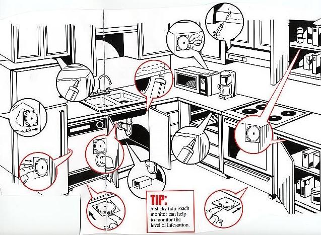 roach_placement diagram