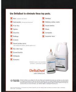 DeltaDust Information Flyer 2