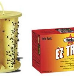 Wasp, Bee & Fly Traps