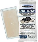 ML Rat Glue Tray Picture