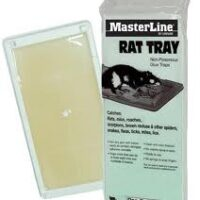 masterline rat tray