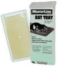 masterline rat glueboard tray trap