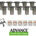 advance termite kit