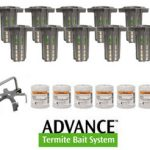 advance termite kit